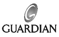 https://punchmedia.ca/wp-content/uploads/2018/07/guardian.png